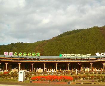 志津川に行ってきた。