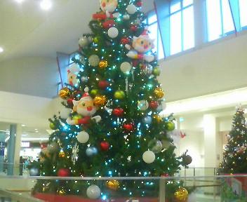 街にはクリスマスツリー