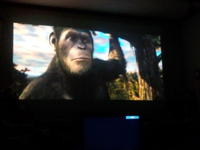 シーザーに会った。猿の惑星